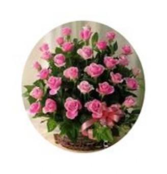 3 Dozen Pink Roses
