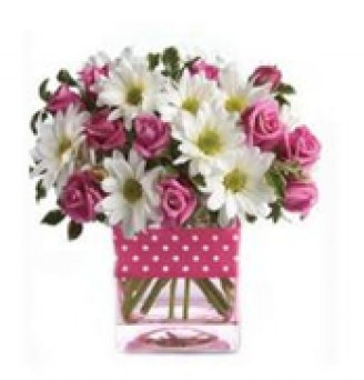 Pink Roses and White Spring Flowers