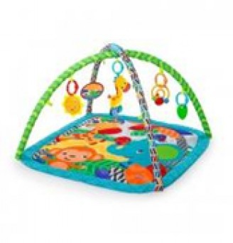 Kids II Bright Stars Zippy Zoo Actvity Gym