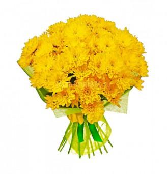 Dozen of Yellow Spring Flowers